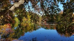 Hummer's Pond